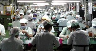 Cả ngàn công nhân có bằng đại học đang làm việc tại Cty Poster Đà Nẵng